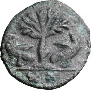 1794R Mezzo follis da 20 nummi 526-534 Albero tra due aquile Roma Bronzo