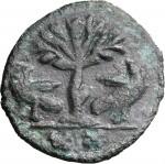 1794R 20 nummi 526-534 Albero tra due aquile Roma Bronzo